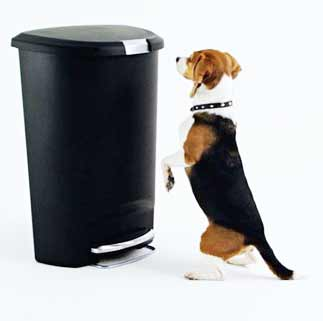 A Dog Proof Trash Can