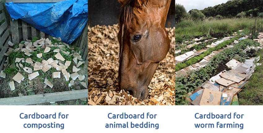 shredded-cardboard-composting-animal-bedding-worm-farming