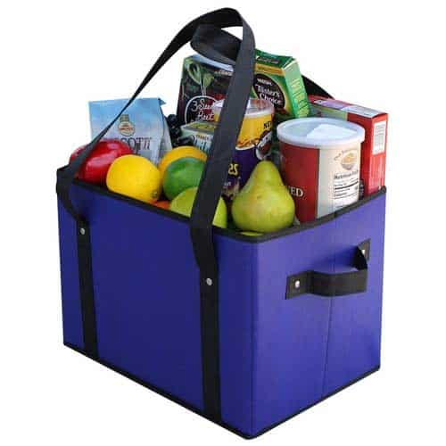 EarthWise-Collapsible-Shopping-Box-Set-with-Side-Handles