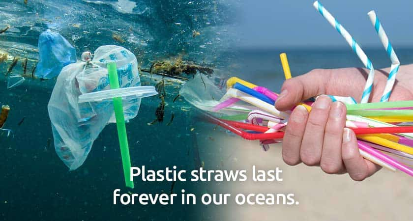 plastic-straws-waste-ocean-beach-pollution