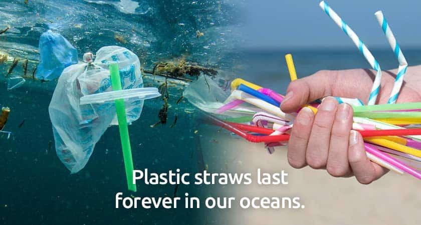 plastic-straws-waste-ocean-beach-pollution