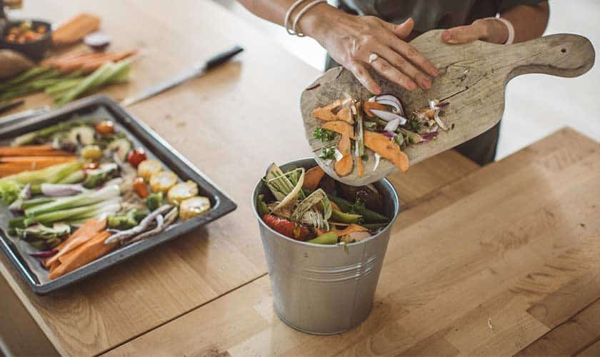what-can-you-put-in-compost-bin