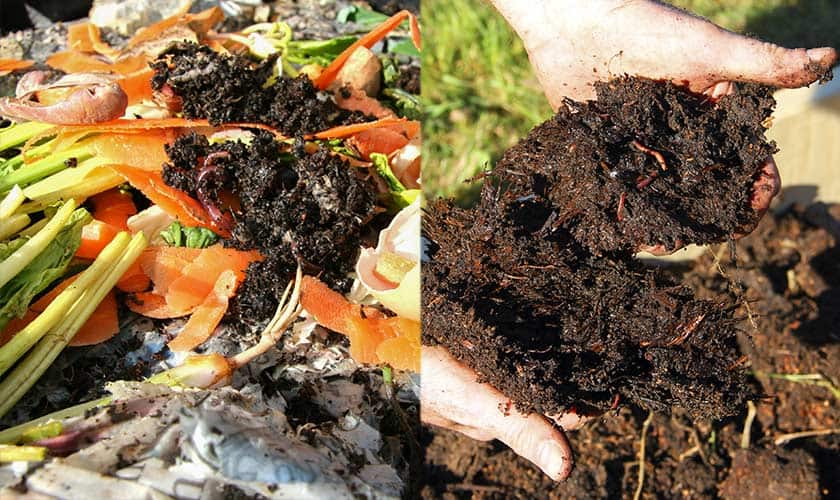 what-is-compost