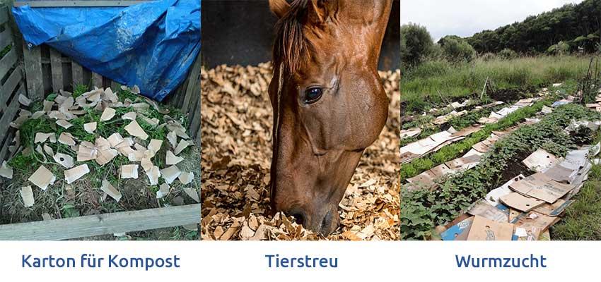 geschredderte-Pappe-Kompostierung-Tier-Einstreu-Wurm-Landwirtschaft